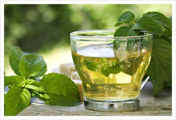 propiedades del té verde y rojo