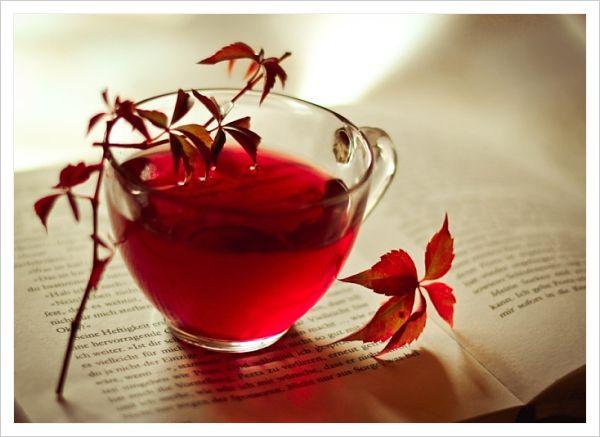 qué té es mejor para adelgazar