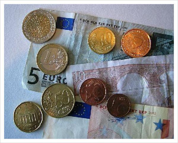 Planta del dolar para que sirve